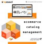 ecommerce catalog management company